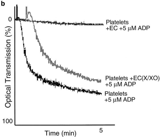 Effects of oxidative stress on EC ATPDase activity. (a) ATPDase biochemical activity assay. The decreased capacity of pEC directly  perturbed by oxidative stress to express ATPDase activity was demonstrated by estimation of phosphate release from supplemental ADP by the  malachite green technique. Exogenous xanthine oxidase (XO, 100 mU/ml)  and xanthine (X, 100 μM) markedly inhibited pEC ATPDase activity in a  statistically significant manner after 2 h oxidant exposure (*P = 0.002;  Mann Whitney Rank Sum Test). This effect could be abrogated by the  supplemental antioxidants superoxide dismutase (SOD; 330 U/ml) and  catalase (1,000 U/ml), confirming the purely oxidant nature of the inhibition (data are expressed as means and standard deviations; normality test  passed for graphical representation). (b) Platelet inhibitory properties of  ATPDase. Further evidence for the loss of ATPDase functional activity  after exposure to oxidants was derived from the demonstration that pEC  exposed to such reactions for 2 h were unable to inhibit platelet aggregation responses to ADP 5 μM.