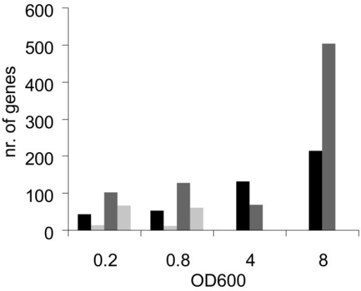 Differential gene expression during growth. The number of genes differently expressed in the ccpA deletion strain compared to the wild-type in four different growth phases (OD600 0.2 = early-exponential, OD600 0.8 = mid-exponential, OD600 4 = transition, OD600 8 = stationary). Both, the genes with a higher (grey bars) and a lower (black bars) expression in the ccpA deletion strain are shown. The light grey bars indicate the number of genes putatively regulated by a CRE-site, these are not shown for the transition and stationary phase.