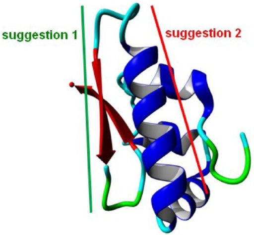 Two sections of SP-G suggested as potentially useful antigen regions.The sections are highlighted on the protein structure model. Suggestion 1 in green comprises a short β-strand, suggestion 2 in red covers an α-helix on the protein surface.