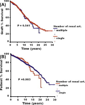 Graft (A) and patient (B) survival rates in patients with SGA or MGA (P = 0.54 and 0.98, respectively).