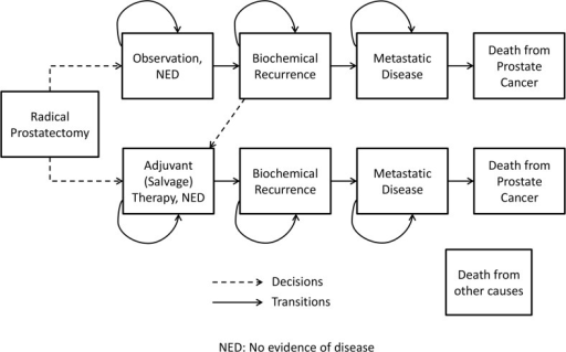 Simplified state transition diagram representing the treatment decisions and health state transitions post radical prostatectomy.NED represents patients with no evidence of disease.