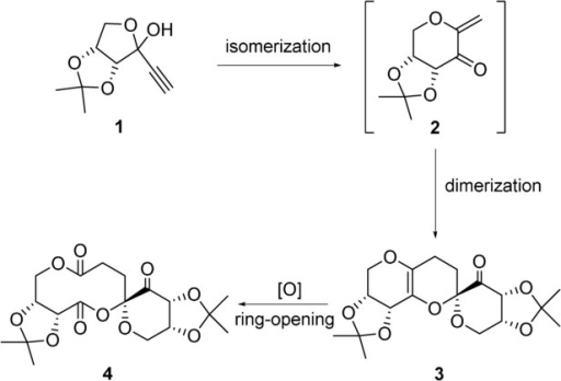 Synthesis of macrocycle 4 via tandem cycloisomerization–dimerization followed by ozonolysis.