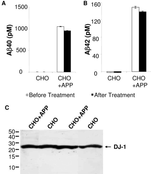 Lack of changes in DJ-1 expression in the presenceof Aβ. Conditioned media from CHO and CHO+APP cells were collected for the measurement of Aβ levels and treatment of PC-12 cells. A. High levels of Aβ40 were found in the media from CHO+APP cells before (white bar) and after (black bar) the treatment of PC-12 cells (the standard error of means was illustrated). B. High levels of Aβ42 were found in the media from CHO+APP cells before (white) and after (black) the treatment of PC-12 cells, compared to undetectable amount of Aβ in the media from CHO cells. C. Conditioned media from CHO or CHO+APP cells were applied to PC-12 cells for 24 hr, and cells were collected for the quantification of DJ-1 by Western blot using antibody DJ-1-N. Cells from two independent experiments were collected, and the expression levels of DJ-1 in both sets of PC-12 cells maintained at similar levels.