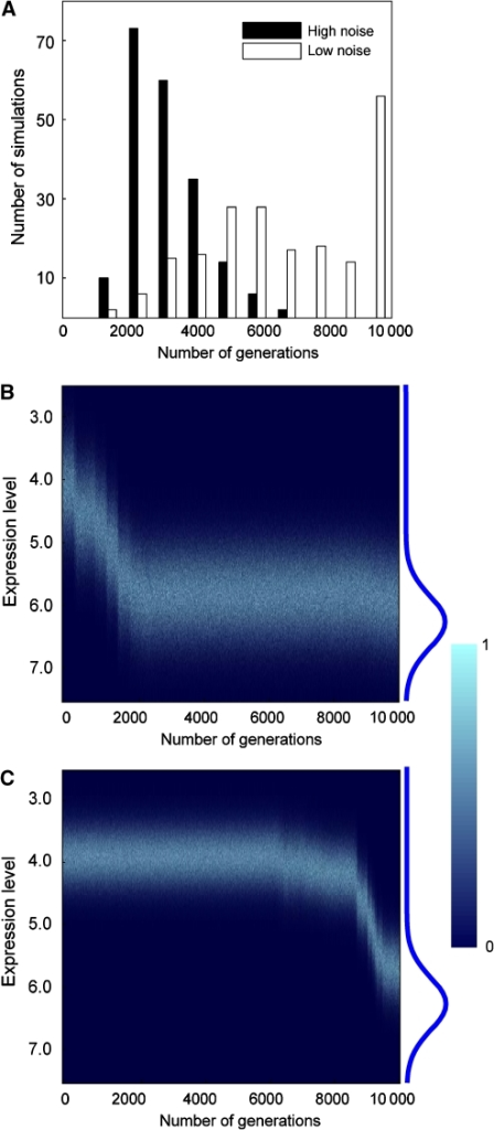 Computer simulation shows faster adaptive evolution of expression level for a noisier genotype than a quieter genotype. (A) The noisier genotype reaches the optimal expression level sooner than the quieter genotype during evolution. (B) A typical case of expression evolution of a noisy genotype. The blue curve to the right of the figure is the fitness function f(x). Each vertical line in the heat map represents the frequency distribution of x in the population in a given generation, with different colors representing different frequencies of cells with given x. (C) A typical case of expression evolution of a quiet genotype.