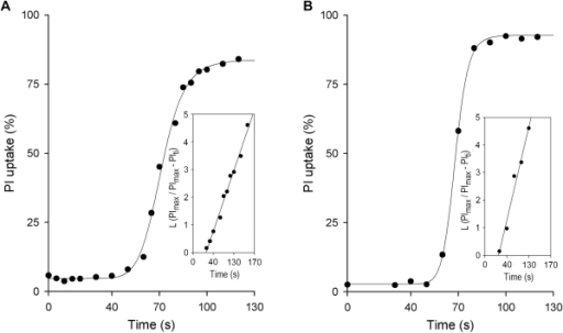 Kinetics of promastigote propidium iodide (PI) uptake in NHS.For each time point, single aliquots (50 µl) of promastigotes (107cells/ml) were mixed with 50 µl 50% pooled NHS and incubated (37°C) for the times indicated. Samples were then transferred into 1 ml PBS containing PI (5 µg/ml), and promastigote membrane damage registered as PI uptake in a flow cytometer. The time course of promastigote PI uptake is shown for a representative experiment. (A) L. donovani (n = 5), and (B) L. amazonensis (n = 4). Insets: plots of L (PImax/PImax−PIti) against incubation time (ti), from which kapp values were derived for promastigote PI uptake reactions.