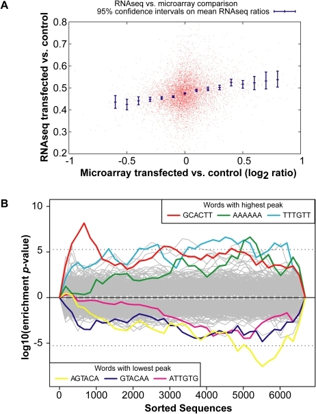 Global gene expression changes in the INPUT.(A) RNA-Sequencing (RNA-Seq) of the INPUT (Total RNA) follows the microarray trend in gene expression. The y-axis represents the RNA-Seq ratio of the INPUT from Dicer1Δ/Δ+Ago2-myc ES cells transfected with miR-294 vs. cel-239b. Higher values mean enriched in cel-239b vs. miR-294. The x-axis represents the fold change in gene expression as measured by microarray. A positive value indicates upregulation of genes in miR-294-transfected cells and a negative value indicates downregulation of genes in miR-294-transfected cells. (B) Overrepresentation of 6-mer (position 2-7) seed matches to miR-294 in the INPUT of Dicer1Δ/Δ+Ago2-myc ES cells transfected with miR-294. The x-axis represents the sorted gene list from most downregulated (left) to most upregulated (right). The y-axes show the significance for each word.