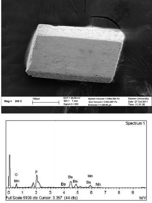 The crystal morphology and chemical composition. Upper: image of scanning electron microscopy for the crystal morphology. Down: the chemical composition of the selected crystal measured by the EDX.