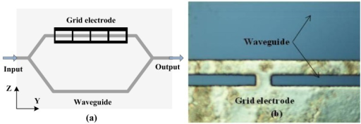 Mono-shielding electrode optimized as a grid type. (a) Schematic of the sensor; (b) Micrograph of the fabricated electrode.