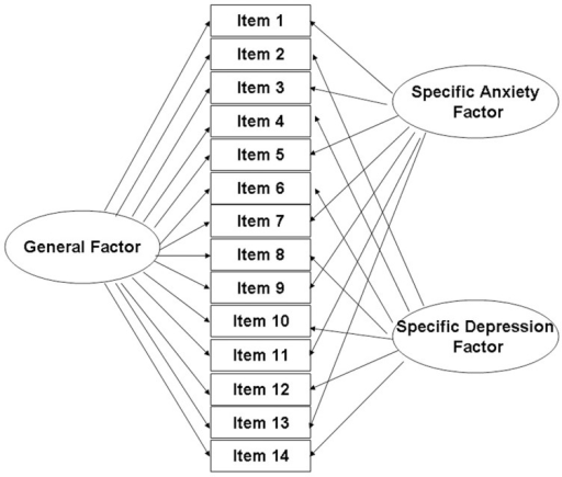 Structure of the hierarchical model of the HADS built using bifactor analysis.In the original scale, 14 items load on 2 subscales (anxiety and depression) respectively. In which, item 1, 3, 5, 7, 9, 11, and 13 belong to anxiety subscale. And item 2, 4, 6, 8, 10, 12, and 14 belong to depression subscale. In the bifactor analysis, all the items have loadings on both the general distress factor and one of the subscale specific factors.