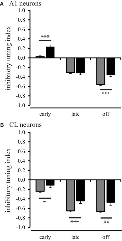Population inhibitory tuning index comparison between young and aged animals. The inhibitory index showed a significant difference between young and aged A1 neurons during the early and off response periods (Panel A). Panel (B) shows that the strength of inhibition or suppressed response is greater in young animals compared to aged animals for CL neurons (*p < 0.05; **p < 0.01; ***p < 0.001).