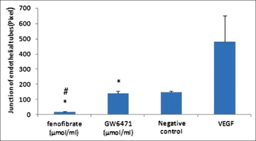 The effect of fenofibrate and GW6471 on in vitro angiogenesis by HUVECs. Quantitative analysis of mean tube number of junction from three independent experiments are shown. *Significantly different from positive control group. #Significantly different from negative control group