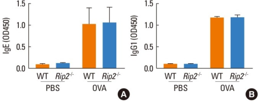 Levels of OVA-specific IgE and IgG1 in the serum. Serum was obtained from blood samples collected 48 h after the last OVA challenge. Serum OVA-specific IgE (A) and IgG1 (B) levels were measured by ELISA. Data are expressed as means±SD.
