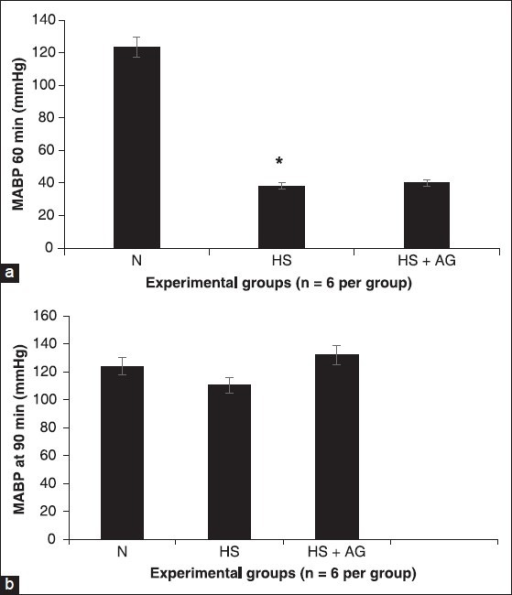 Effects of in vivo treatment with aminoguanidine (AG) on mean arterial blood pressure in rats (a and b). Recording of arterial blood pressure after 1 h hemorrhages (a) and 30 min of resuscitation (b) in the normotensive group (N), hemorrhage group hemorrhagic shock (HS), hemorrhage group treated with AG (HS-AG). *represents P < 0.05 versus hemorrhagic shock resuscitated group treated and not treated