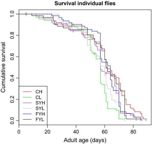 Survival curves for individual flies for the six food treatments, indicated by lines with different colours.
