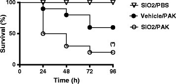 Survival curves of mice infected withPseudomonas aeruginosastrain PAK. C57Bl/6j mice were instilled with 5 mg/kg (100 μg/mice) of SiO2 NPs or vehicle. 5 h after, mice were infected with P. aeruginosa (PAK strain) (2x107 CFU/mice) and survival was followed over time. (*) p < 0.05 Log-Rank (Mantel-Cox) test (n = 10 mice per group).