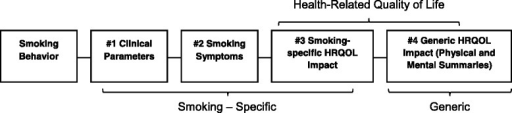 Conceptual framework for smoking-specific and generic endpoints