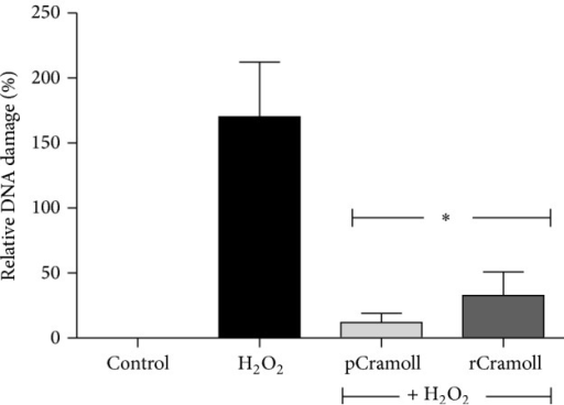 Effect of pCramoll and rCramoll on the DNA damage induced by H2O2 in Vero cells by TUNEL analysis using flow cytometry. (∗) Significant differences in relation to H2O2.