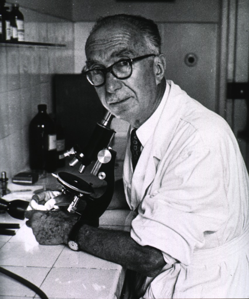 <p>Half-length, seated at a microscope, left pose, turned to face camera, wearing glasses.</p>