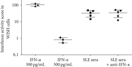 Stimulation of WISH reporter cells with IFN-α, IFN-κ, and SLE sera with and without anti-IFN-κ antibodies. WISH cells were assayed for type I IFN-induced gene expression as described in the methods, using the stimuli indicated on the graph. Anti-IFN-κ antibody was used at a concentration of 10 μg/mL, and anti-IFN-κ treated sera were preincubated with the antibody for 30 minutes before the sera was applied to the WISH cells. Y-axis shows the IFN-induced gene expression score calculated as described in the Methods.