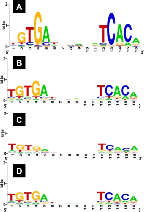 The consensus sequences of CRP binding.The binding sequences of cAMP-CRP were subjected to the Logo analysis for determinatin of the consensus sequences for the following samples: (A) the whole set of CRP targets (total 323 sequences) identified by Genomic SELEX screening in this study; (B) the set of CRP targets (165 sequences) that are listed in Regulon DB and identified by Genomic SELEX; (C) the set of CRP targets (129 sequences) that are listed in Regulon DB but not identified by Genomic SELEX; (D) the whole set of CRP targets (294 sequences) listed in Regulon DB.