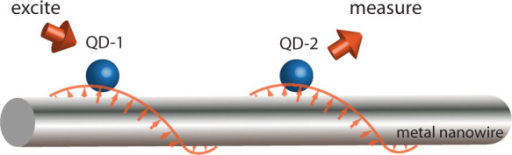 Schematics of a experimentally-accessible system.Two two-level quantum dots coupled to metal nanowire surface plasmons. Here, the quantum dot-1 is assumed to be excited initially, and one measures the populations of the quantum dot-2.
