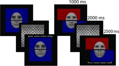 Trial structure used in Experiment 1, with examples from trials in which the context (left) encouraged or (right) discouraged the perceptual grouping of the face parts (referred to as the grouped and ungrouped conditions, respectively). The dashed bracket served as the cue in each trial to indicate which part (top or bottom) the participant should make the matching judgment on