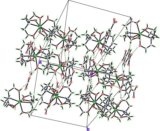 The packing of the molecular components in the crystal structure of the title compound. O—H···O hydrogen bonds are indicated by dashed lines.