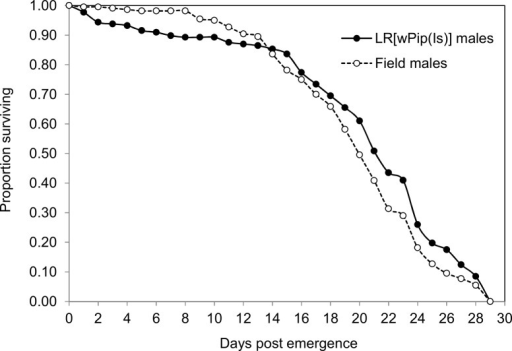 Survival curves of field males (N = 220; dotted line) and LR[wPip(Is)] males (N = 177; solid line) in the semi-field setup.
