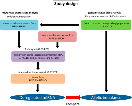 An overview of the study designs.For microRNA expression analysis, we used 3 sample cohort, technical validation set (n = 8), training set (n = 18) and independent tumor set (n = 114). For SNP analysis, we used 119 NSCLC cohorts that contain majority of samples we used for microRNA analysis. Integration of deregulated microRNAs and allelic imbalance results were performed in a subset of sample.
