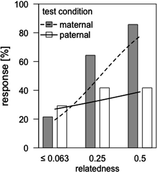 "Percentage of males that responded to the presentation of ""coo"" calls from females with different relatedness to them. In the maternal condition (gray bars), we presented unrelated individuals (r ≤ 0.063) vs maternal half-sisters (r = 0.25) or mothers (r = 0.5). Likewise, in the paternal condition (white bars), unrelated individuals (r ≤ 0.063) vs paternal half-sisters (r = 0.25) or daughters (r = 0.5) were presented. Dashed and solid lines represent the model estimates for male responses toward the different degrees of relatedness within the maternal and paternal kin-line, respectively"