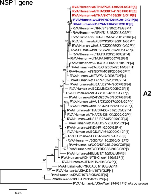 Phylogenetic tree constructed from the nucleotide sequences of the NSP1 genes of strains PCB-180, SKT-109, and SSKT-41, and representative RVA strains.See legend of Fig 3. Scale bar: 0.05 substitutions per nucleotide.