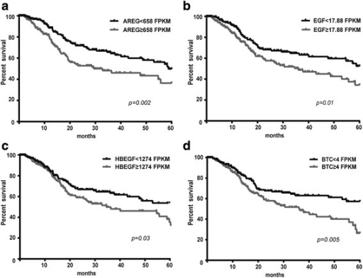 High tumorous mRNA levels of EGFR-ligands predicted poor prognosis in HNSCC patients. HNSCC patients with higher than median tumorous AREG (a), EGF (b), HBEGF (c) or BTC (d) mRNA levels had lower five-year survival rate compared to patients with lower than median expression levels (Kaplan-Meier curve, Log rank test). The mRNA levels are measured as fragments per kilobase per million mapped reads (FPKM)