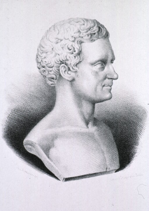 <p>Marble bust, right profile.</p>