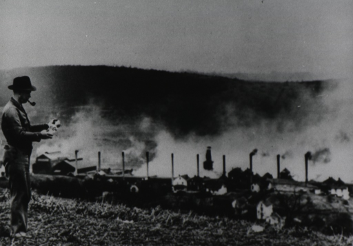 <p>A man stands on a hill overlooking a row of smoke stacks at the zinc plant; smoke obscures much of the area behind the plant.</p>