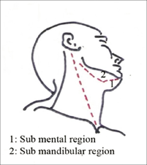 Surface Anatomy Of Submental And Submandibular Region Open I