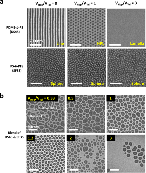 Self-assembled morphologies of pure BCPs and blended BCPs treated by various mixed solvent vapors.(a) Morphologies of single-component PDMS-b-PS (DS45) and PS-b-PFS (SF35) in response to different solvent vapors. Cylindrical (top-left), hexagonally perforated lamellar (top-center), and lamellar (top-right) morphologies were obtained from the same PDMS-b-PS BCP by changing the volume ratio of heptane (VHep) and toluene (VTol). PS-b-PFS maintained the same spherical morphology (bottom) for the different solvent vapor treatment conditions. (b) Morphological variation of the BCP blends (PDMS-b-PS and PS-b-PFS) treated by mixed solvent vapors. The BCP blending ratio (VDS45/VSF35) was fixed at 2.5. Uniform host-guest assembly between the two BCPs were achieved at VHep/VTol = 1.2.