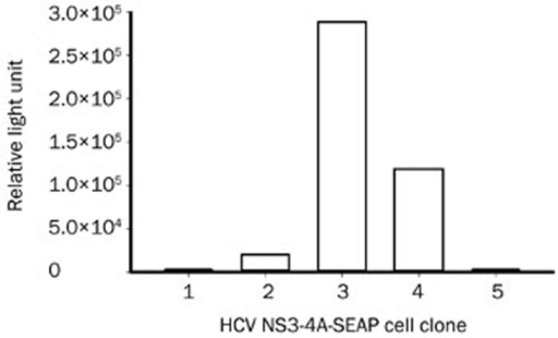 The reporter activities of HCV NS3/4A-Seap stably transfected clones. Huh7.5.1 cells were transfected with the pSelect-NS3/4-Seap plasmid using Lipofectamine 2000 transfection reagent and selected with 500 mg/L zeocin for 4 weeks. Cell colonies were picked and propagated to the proper confluency, and the Seap activities in culture supernatants were assayed.