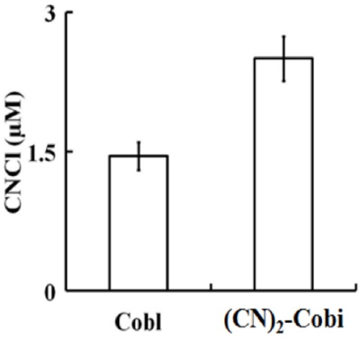 Cyanocobalamin and (CN)2-Cbi destruction mediated by HOCl causes the liberation of CNCl.Equal concentrations of Cbl and (CN)2-Cbi (110 µM) were treated with 50-fold molar excess of HOCl and CNCl generation were assayed colorimetrically as detailed under Materials and methods. The data are representative of three independent experiments with the error bars representing the standard error measurements.