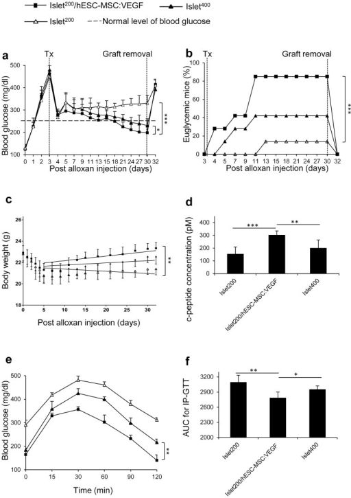 Reduction in minimal islet mass required to reverse diabetes by co-transplantation of hESC-MSC:VEGF.(a) Blood glucose (mg/dl), (b) percentage of euglycemic mice and (c) body weight in grams (g) of mice from days 0 to 32 PAI. (d) Serum C-peptide (pM), (e) IP-GTT curve and (f) AUC of IP-GTT of mice at 30th day PAI. Values represent mean ± SD, n = 7/group. * p < 0.05, **p < 0.01, ***p < 0.005. Tx: Transplantation.