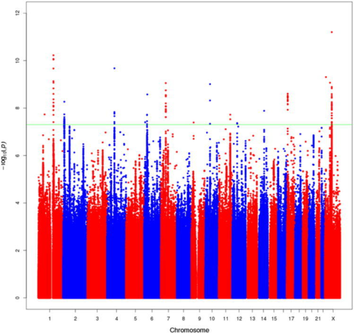 Manhattan Plot of genotyped and imputed results from the European ancestry meta-analysis of overall prostate cancer risk. All SNPs within 500kb of known GWAS SNPs are omitted. The green line represents P=5×10-8. This figure shows all new variants with P<5×10-8, regardless of the confirmation results (one signal on chr1, one on chr4, one on chr17, and 2 on chr X were not confirmed). Many of the new signals are in close proximity to one another on the same chromosome (see Supplementary Table 6).