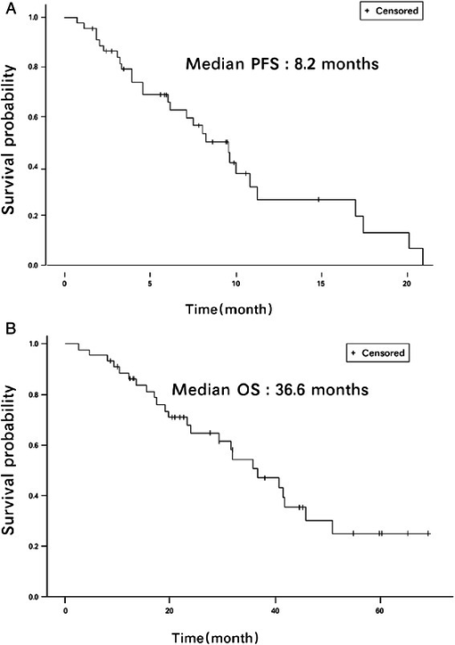 (a) Progression free survival (PFS) and (b) Overall survival (OS) of intent-to-treat (ITT) patients. The median PFS was 8.2 months, and the median OS was 36.6 months