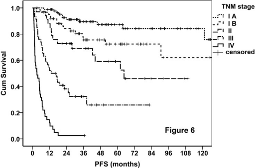 PFS curves of the entire cohort stratified by the TNM staging system.