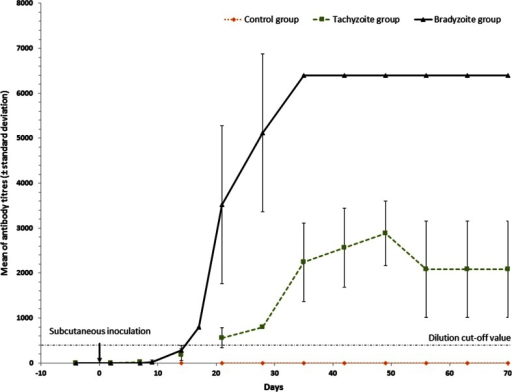 Kinetics of the mean humoral immune response (± standard deviation bars) from each rabbit group. Rabbits were experimentally subcutaneously challenged with 66 μg of ovalbumin (group control), 6.106 tachyzoites (group tachyzoites) and 6.106 bradyzoites (group bradyzoites) of B. besnoiti at day 0. The dashed lines indicate the cut-off value for IgG-IFAT (200). Two dates (day 9 and day 17) were missing for control and tachyzoite groups