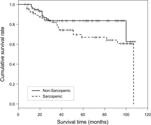 Kaplan–Meier survival curves in post-liver transplantation sarcopenic and non-sarcopenic patients with survival >6 months.Log rank test p-value = 0.069.