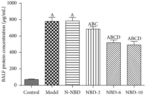 Effects of NBD on pulmonary vascular leakage in mice with ALI. BALF protein concentrations were assessed to evaluate pulmonary vascular leakage. The data indicated that NBD can noticeably reduce BALF protein levels. Data are expressed as the mean ± SD (n = 6). A represents versus control group, AP < 0.05; B represents versus model group, BP < 0.05; C represents versus N-NBD group, CP < 0.05; D  represents versus NBD-2 group, DP < 0.05.