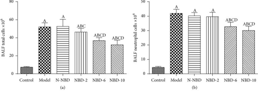Effect of NBD on inflammatory cell infiltration in the BALF of mice with ALI. BALF (a) total cell and (b) neutrophil levels were assessed to evaluate inflammatory infiltration. Data are expressed as the mean ± SD (n = 6). A represents versus control group, AP < 0.05; B represents versus model group, BP < 0.05; C represents versus N-NBD group, CP < 0.05; D represents versus NBD-2 group, DP < 0.05.