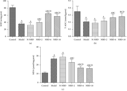 Effect of NBD on SOD and T-AOC activity and MDA concentrations in the lung tissues of mice with ALI. LPS challenge significantly increased MDA levels and decreased SOD and T-AOC activity compared with sham controls; however, treatment with the middle and large NBD concentrations exerted effects contrasting with those described above. Data are expressed as the mean ± SD (n = 6). A represents versus control group, AP < 0.05; B represents versus model group, BP < 0.05; C  represents versus N-NBD group, CP < 0.05; D represents versus NBD-2 group, DP < 0.05.