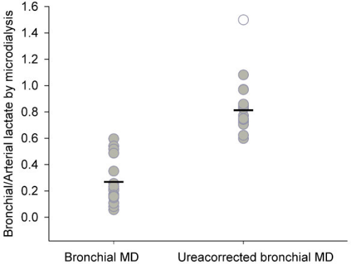 Accuracy of bronchial microdialysis of lactate. All values (gray circles) and mean (-) are presented. One value (open circle) is excluded as an outlier due to extreme deviation in the arterial microdialysis value. The accuracy of bronchial microdialysis with a continuous lactate infusion was mean 0.26 ± 0.08 with a coefficient of variation of 62.6%. The accuracy of bronchial microdialysis with a continuous lactate infusion and a correction by the arteriobronchial urea gradient was mean 0.81 ± 0.06 with a coefficient of variation of 17.0%. The reduced coefficient of variation after correction by the arteriobronchial ureagradient sustains the ureacorrection as useful correction factor to estimate the absolute concentrations of molecules in the epithelial lining fluid as measured by microdialysis.