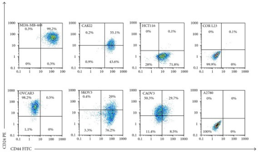 FACS analysis for double staining of CD44 and CD24 in selected human cancer cell lines. These cell lines are breast (MDA-MB-468), renal (CAKI2), colon (HCT116), lung (COR L23), and ovarian cancer (OVCAR3, SKOV3, CAOV3 and A2780). Each cancer cell line shows differential expression for both CD44 and CD24. It is highly variable even amongst cell lines of same cancer types indicating the heterogeneity between tumours.
