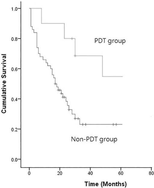 Kaplan-Meier survival analysis of the patients undergoing PDT vs. non-PDT for pleural spread (P = 0.047).